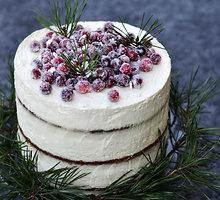 Meduolinis tortas su spanguolėmis