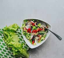 Spalvingos salotos su vytinta antiena