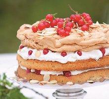 Baltymų tortas su raudonaisiais serbentais