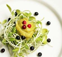 Saulėgrąžų daigų salotos su avokadų kremu