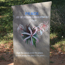 Ant akmens užrašytos Aurovilio vertybės