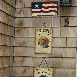 T & G nuotr./Įeinant į namus pasitinka ant lauko sienos iškabintos šeimininkės šunų fotografijos.