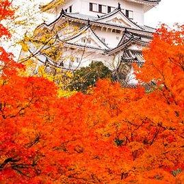123rf.com nuotr./Himeji pilis rudenį