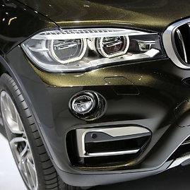 Juliaus Kalinsko / 15min nuotr./BMW X6