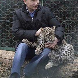 """""""Reuters""""/""""Scanpix"""" nuotr./Vladimiras Putinas su leopardu"""