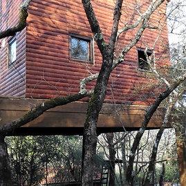 Jurgitos Lapienytės nuotr./Vyrai patys pastatė šį namelį medyje