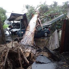"""""""Scanpix""""/AP nuotr./Kaliforniją nusiaubė audra"""