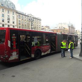 Mariaus Bagdono nuotr./Sirgalius nemokamai vežantis autobusas