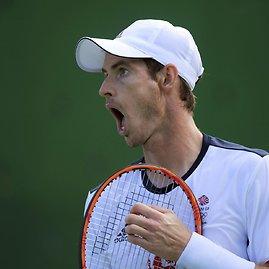 """""""Scanpix"""" nuotr./Andy Murray prieš Steve'ą Johnsoną"""