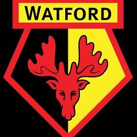 """""""Twitter"""" nuotr./""""Watford"""" logotipas"""