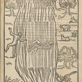Iliustracija iš XVI a. plaukimo vadovėlio