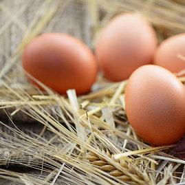 Fotolia nuotr./Vištų kiaušiniai