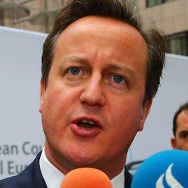 Scanpix/Sipa USA nuotr./Didžiosios Britanijos premjeras Davidas Cameronas