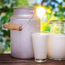 123rf.com nuotr./Pienas