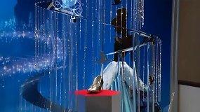 Tokijuje pristatyta 800 tūkst. dolerių verta platininė Kalėdų eglė