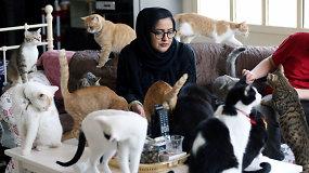 Beveik 150 kačių po vienu stogu: kaimynų pasipiktinimas nesulaiko moters nuo keturkojų gelbėjimo