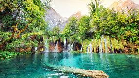 Kroatijos Istrija keliautojus vilioja įspūdinga gamta ir jaukiais miestais