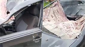 Nufilmavo, kas lieka iš automobilio, kai į kelią išbėga arklys