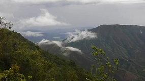 Kolumbijos Andai, bekelė