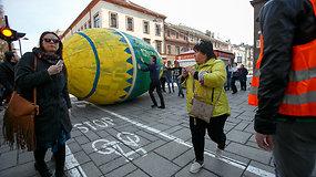Kaune riedėjo rekordinio dydžio margutis