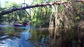"""Ekspedicija """"Baidarė upėje"""": plaukimas Ūla – rojus akims ir staigmenos už posūkių"""