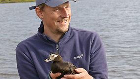 KU mokslininkas Arktyje leido žvarbią vasarą: gaudė ir operavo ledines antis