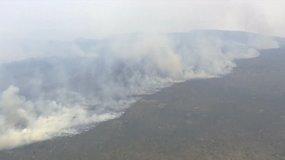 Tasmanijoje krūmynų gaisrai nusiaubė 68 tūkst. hektarų