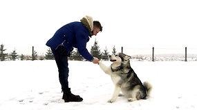 Žvaigždės augintinis: Marius Jampolskis ir trys jo šunys