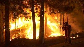 Portugalijoje siaučia miškų gaisrai