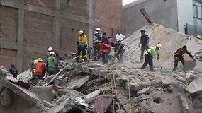 Meksiką supurtė stiprus žemės drebėjimas