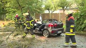 Vokietijoje smarki audra vartė ant automobilių medžius, žuvo septyni žmonės
