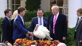 Donaldas Trumpas suteikė malonę dviem Padėkos dienos kalakutаms