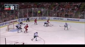 Kuriozas NHL: sirgalius į aikštę sviedė negyvą aštuonkojį