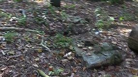 Varėnos rajone išniekintos istorinės kapinės