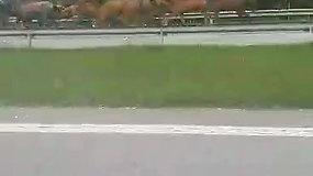 Magistraliniame kelyje Vilniaus rajone pastebėti bėgantys žirgai