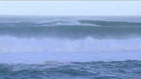 Havajuose vyko banglenčių pasaulio čempionato etapas - Vans World Cup