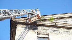 Ugniagesiai nukėlė ant pastato stogo įstrigusį katiną