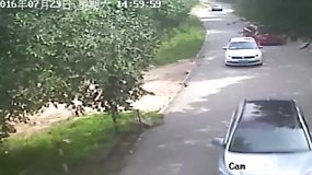 Kinijoje iš automobilio išlipusią moterį pačiupo tigras (N-8)