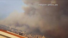 Madeiros saloje – didžiulis gaisras