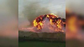 Milžinškas gaisras Radviliškyje – dega didžiulė medžio atliekų krūva