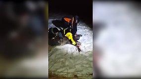 Žvejai savo kūnais bandė sušildyti paliegusį briedžio jauniklį