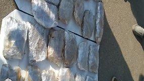 Dujų įrangos kuro talpoje rasta apie 10 kg kanapių
