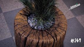 Unikalūs vaikino gaminami baldai – iš senos medienos