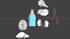 Kaip alkoholis pakenkia įvairiems organams?