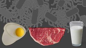 11 patarimų, kurie padės išvengti salmoneliozės