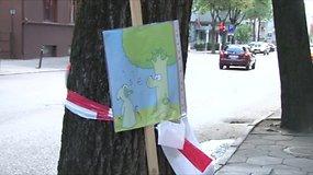 Į kovą dėl Kaune kertamų medžių jau stoja ne tik kauniečiai, bet ir teisininkai