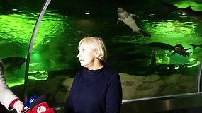 Spindintis akvariumo vanduo