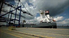 Ko Gdanskui pavydi Klaipėdos uostas ir kodėl Palanga geriau už Sopotą?