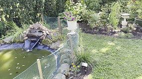 Rūtos Karulaitės puoselėjama aplinka