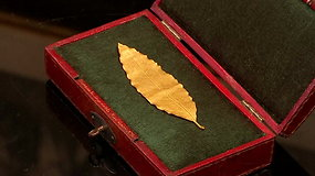 Ypatingo aukciono metu bus siūloma įsigyti Napoleono karūnos detalę
